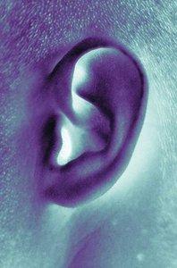 Ohr knoten hinter Knoten hinter