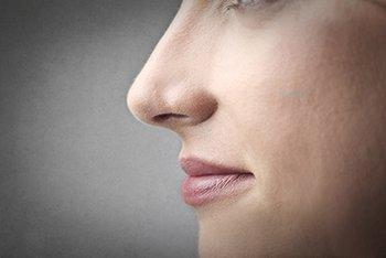 Trockene nase extrem Trockene Nase